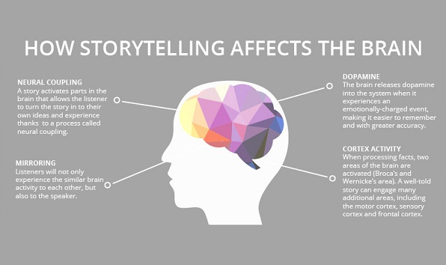 effect on brain The-Science-of-Storytelling-infographic